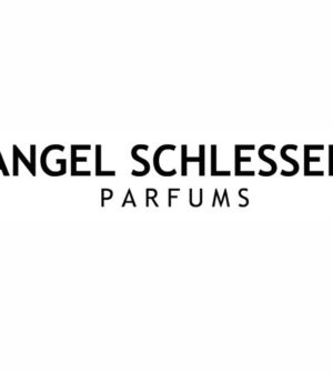 Angel Schlesser 1