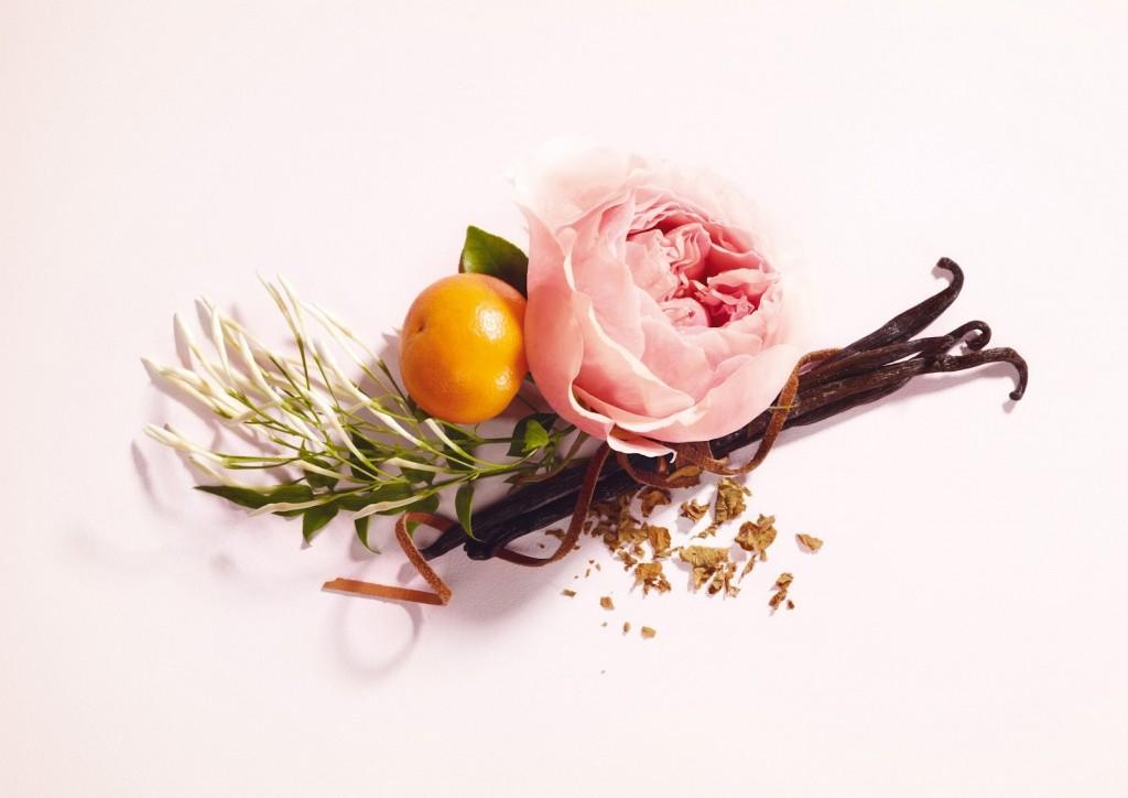 notas-perfumes-88