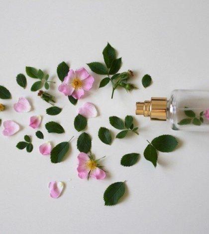 Como escolher o perfume que combina consigo? 10