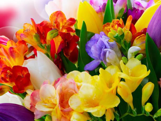 A função das flores na composição de um perfume 6