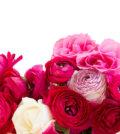 A função das flores na composição de um perfume 29